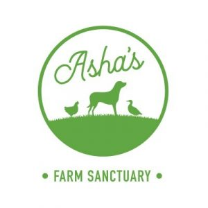 Asha's Farm Sanctuary